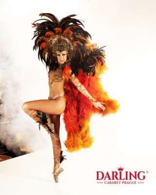 Les Plumes show in Prague at the Darling cabaret. There're beautiful exotic costume on hot cabaret dancer.
